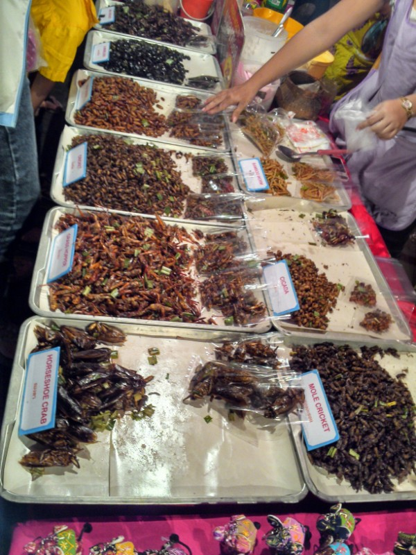 Chiang Mai Weekly Market Eating Insects